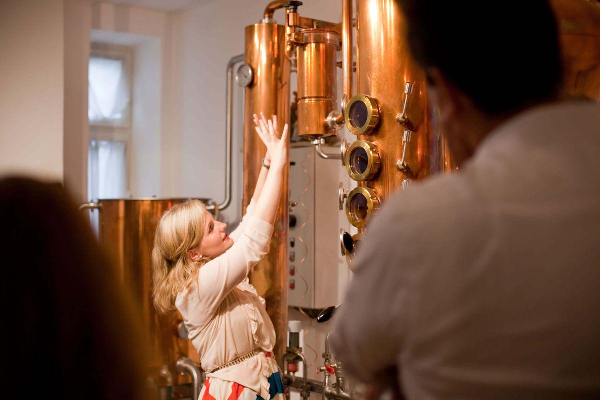 Erklärung der Destillationsanlage beim Gin Tasting