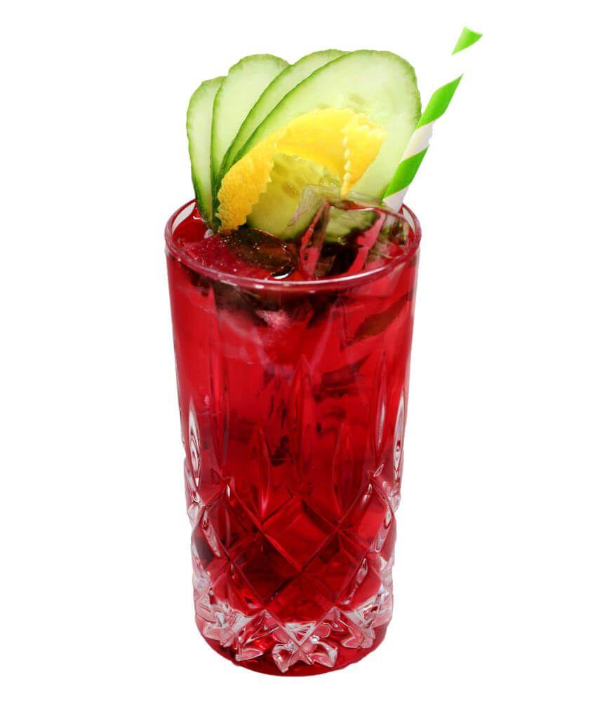 Gin Rezept mit Cranberrysaft und Vanille