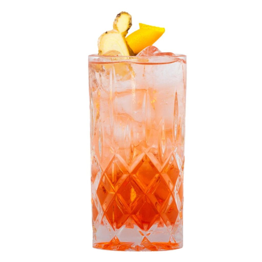 Gin Cocktail Rezept mit Kombucha Gunpowder Ginger und THE DUKE Rough Gin