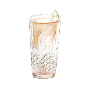 Gin & Juice | The Classic | mit THE DUKE Munich Dry Gin | Freisteller Drink