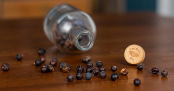 Welche Gin-Sorten gibt es und was sind die Unterschiede? THE DUKE erklärt es euch!