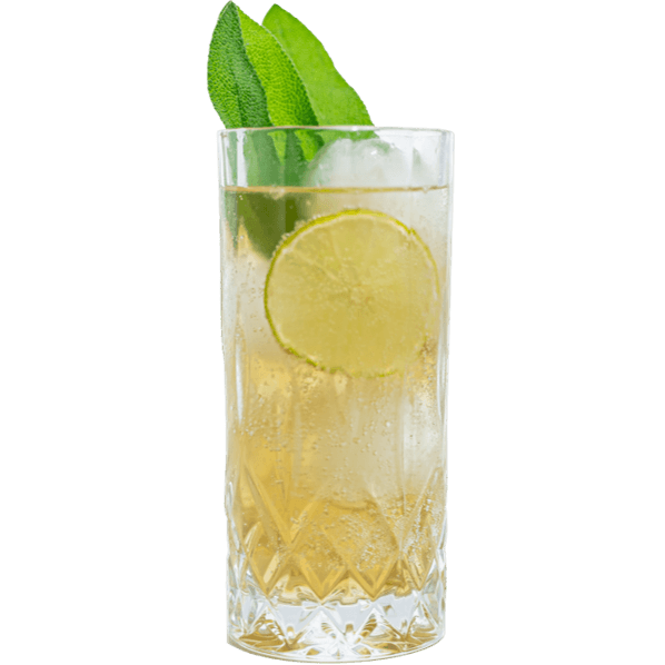 Longdrink mit THE DUKE Munich Dry Gin, Salbeyer und Ginger Ale