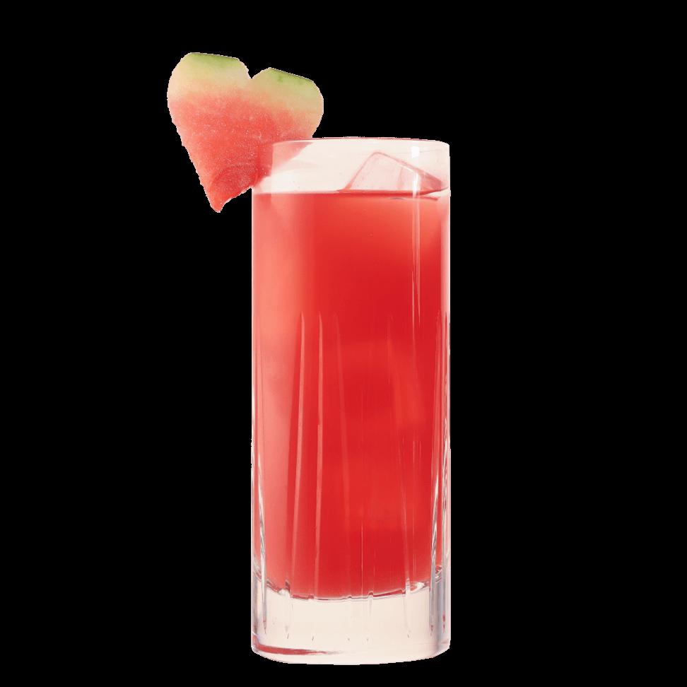 Gin Cocktail mit frischer Wassermelone und THE DUKE Wanderlust Gin